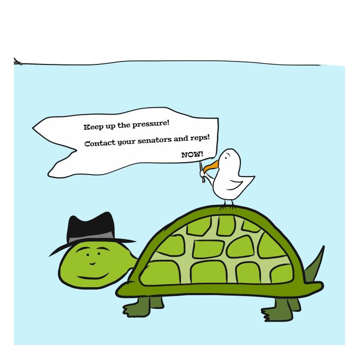bird-on-turtle-sign